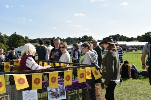 Spot and Sandra at the Game Fair